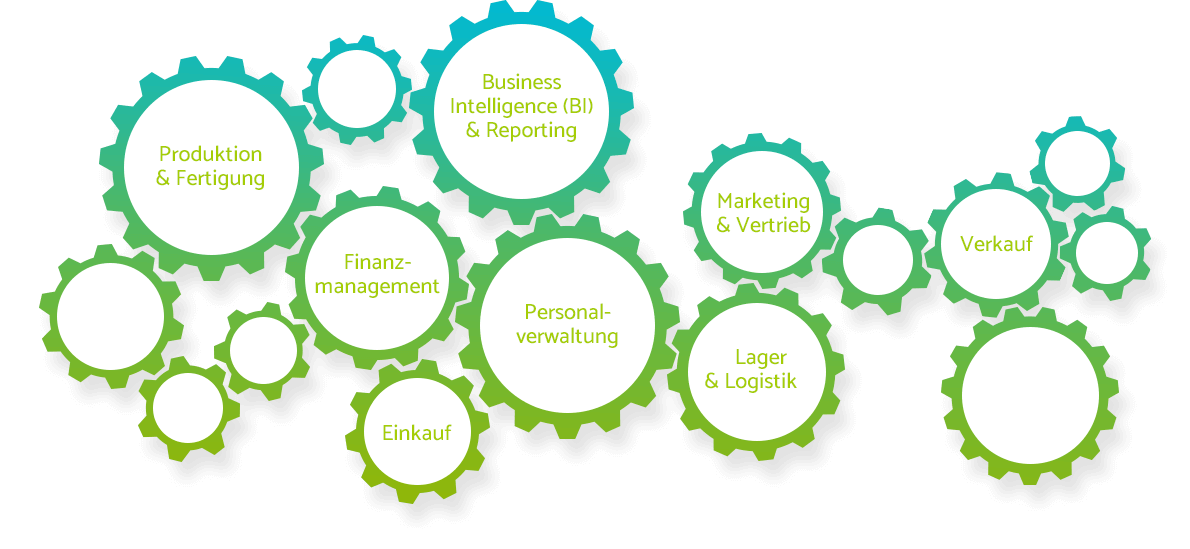 Microsoft Dynamics NAV Module