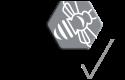 Printvis Logo
